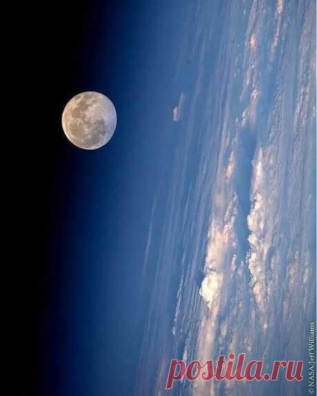 Полнолуние с борта МКС.  : NASA/Jeff Williams @iss