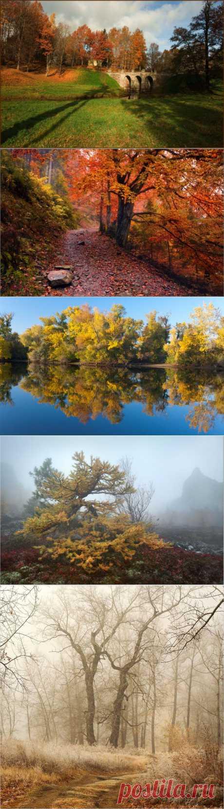 Это время года осенью зовется