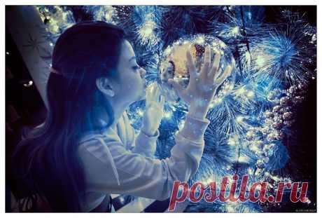 Волшебные новогодние ритуалы для привлечения богатства! » Женский Мир