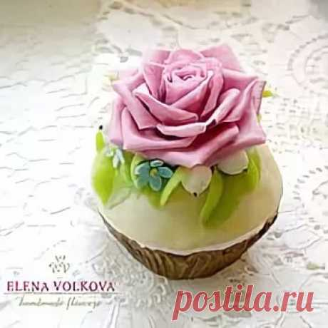Elena Volkova royal delicacy: 17 thousand images are found in Yandex. Pictures