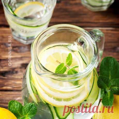 Вода Сасси — новое об известном напитке | | ГОРНИЦА