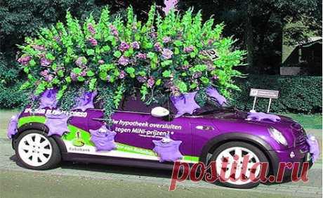 Парад цветов в Аалсмеере