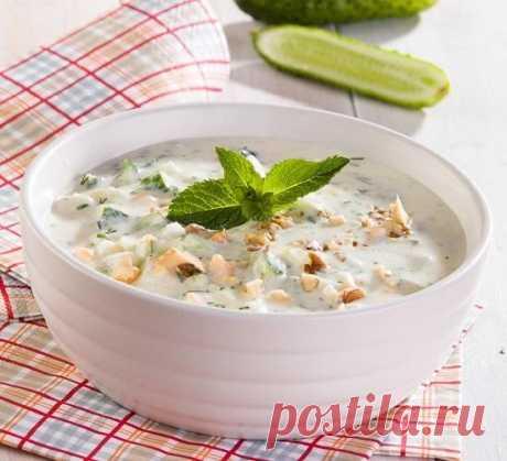 Таратор: готовим холодный болгарский суп
