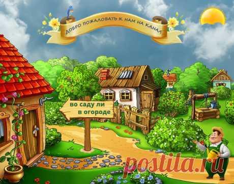 ЛАВРУШКА – ЛЕЧИТ НАСМОРК ЗА 1 ДЕНЬ | Во саду ли в огороде | Яндекс Дзен