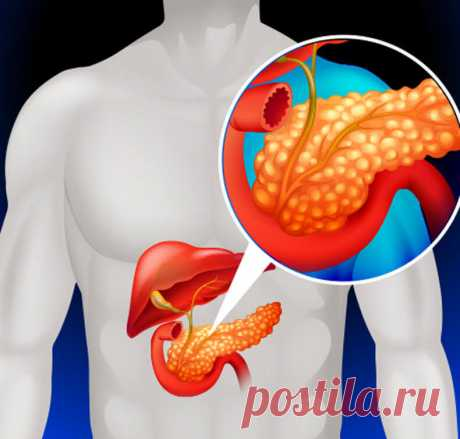 How to clear a pancreas by means of natural means