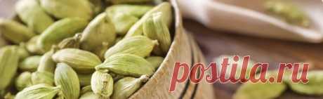 Кардамон для похудения: рецепты и как принимать