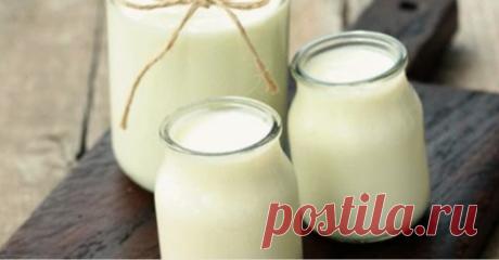 Домашний йогурт без йогуртницы: 5 простых рецептов | Golbis