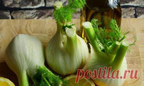 Ароматный фенхель для здоровья и похудения Фенхель – очень ароматное растение, которое помогает улучшить вкус многих блюд. Использовать можно клубни фенхеля, зелень и его семена. Чем полезно это растение? Какие блюда из фенхеля можно приготови...