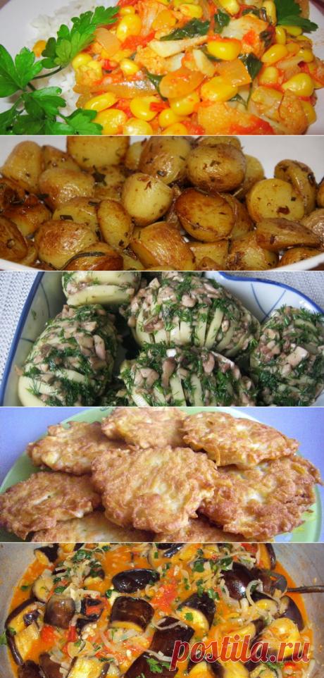 Вегетарианские вторые блюда: рецепты и фото блюд на каждый день для вегетарианцев