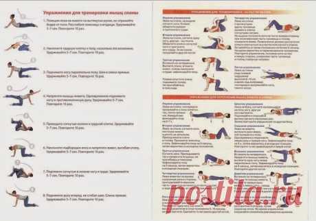 Упражнения ЛФК для пояснично-крестцового отдела позвоночника. Упражнения по Бубновскому