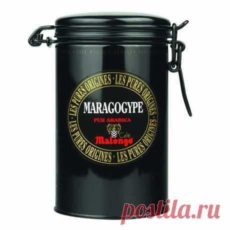 Кофе Malongo молотый Папуа Новая Гвинея (250 гр.) в Москве, купить по выгодной цене в магазине Кофеманыч, каталог с фото