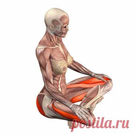 Упражнения для улучшения кровообращение органов малого таза  Комплекс гимнастических упражнений, позволяющих укрепить мышцы влагалища и тазового дна, нормализовать функции половых желез.   Эти упражнения окажут благотворное влияние на женский организм в случае наличия хронических воспалительных процессов в женских половых органах и в случае развития бесплодия на фоне неврозов. Показать полностью…