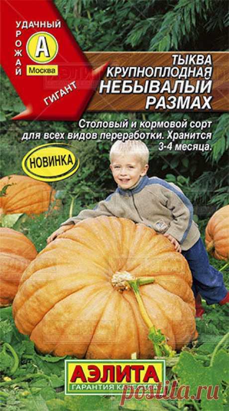 "Тыква крупноплодная ""Небывалый размах"""