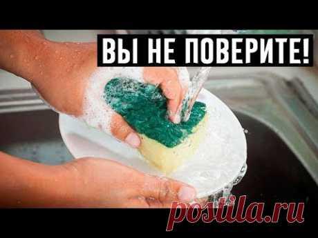 Всегда считала, что губкой можно только посуду мыть, а потом посмотрела, что с ней делает свекровь!
