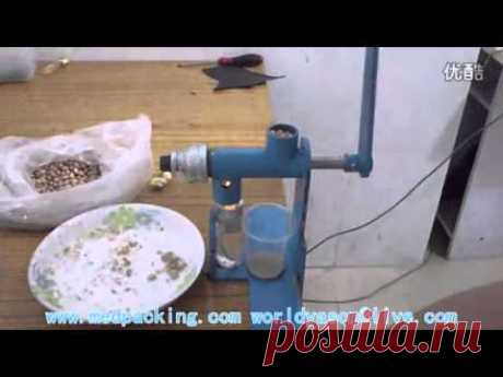 Hand Operated Oil Press