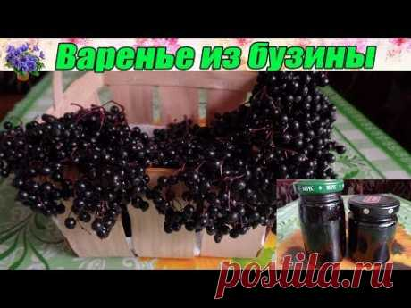 Варенье из чёрной бузины.Сладкое лекарство из чёрной лесной ягоды.