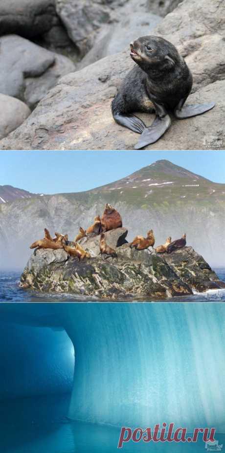 (+1) тема - Природа России в фотографиях | ТУРИЗМ И ОТДЫХ