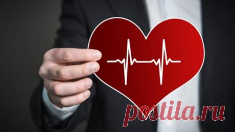 Укрепляем сосуды и сердце самостоятельно: 4 простых действия | Кладовая здоровья | Яндекс Дзен
