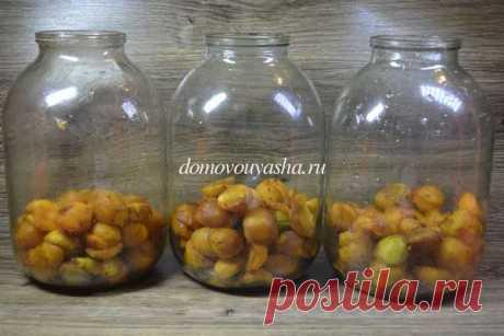 Компот из абрикос без косточек на зиму. Пошаговый рецепт с фото   Народные знания от Кравченко Анатолия