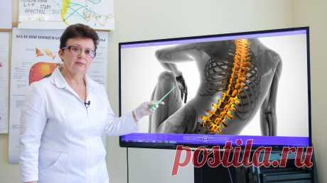 Онлайн-курс Профилактика и восстановление здоровья при заболеваниях костно-мышечной системы