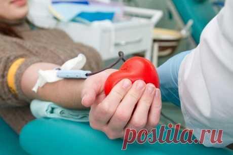 Как часто можно сдавать кровь: полезная информация — СОВЕТНИК