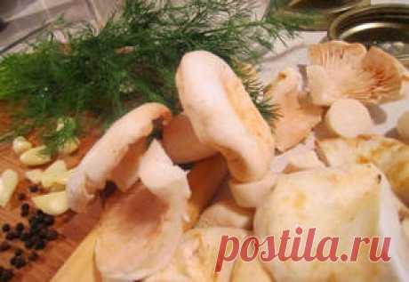 Лучший рецепт грибной икры из рыжиков | Грибной сайт