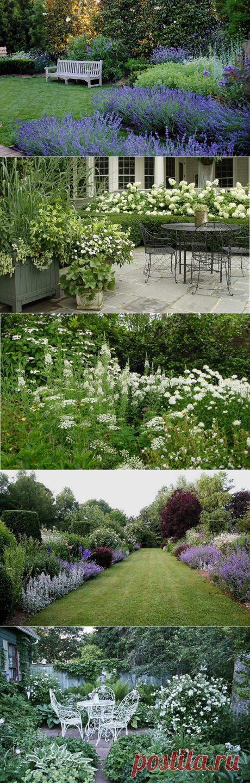 Монохромный сад: чудо ландшафтного дизайна, способное сделать приусадебный участок уникальным | Dream house | Яндекс Дзен