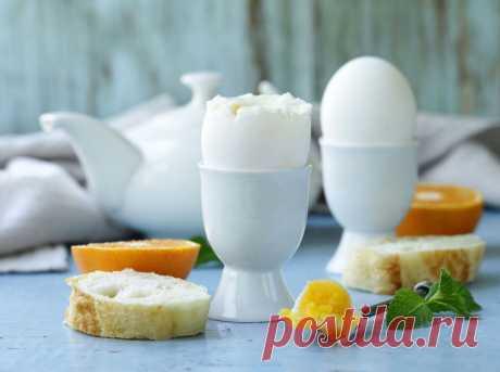 Сытная голландская диета — уходит до 5 кг за 7 дней | SimpleSlim