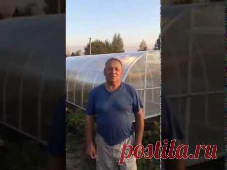 Теплицы от производителя в Ярославле. Теплицы-ярославль.рф - YouTube