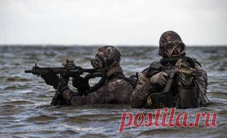 Спецназ США. Командование специальных операций ВМС США - Мир оружия - медиаплатформа МирТесен