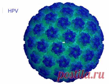 Ацикловир при лечении вируса папилломы человека -