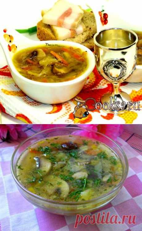 Shalyapinsky Russian cabbage soup the recipe with a photo