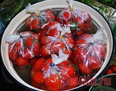 Помидорчики в пакетах, вкуснотище =Помидоры в пакетах.   Ингредиенты:  -1 кг. помидор  -1 ст. л. соли  -1 ч. л. сахара  -Укроп,  -1-2 г. чеснока.  =Поместить еще в один пакет и хранить в теплом месте, периодически встряхивая.  Через пару суток на вашем столе очень вкусные, пряные, быстро соленые помидоры с чесноком и укропом.