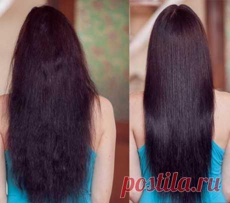 Филлер для волос - какие они бывают, способ применения. Обзор средств: lador, dnc, золотой шелк