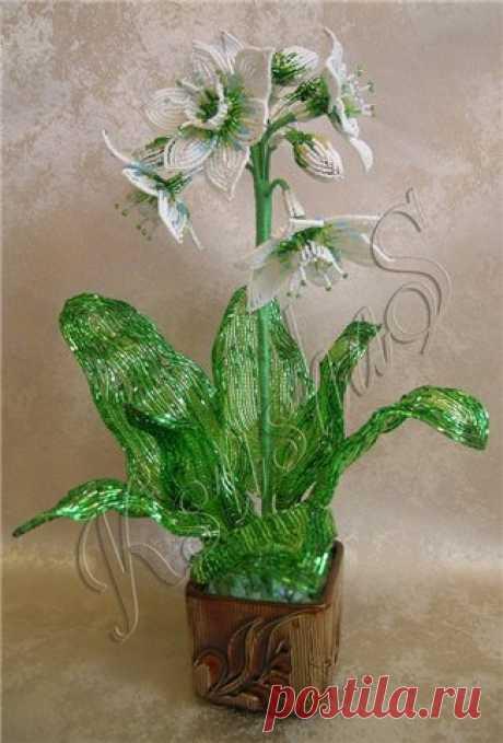 Восхитительный цветок из бисера Восхитительный цветок из бисераВосхитительный цветок из бисера распустится в ваших руках, чтобы никогда не завянуть.