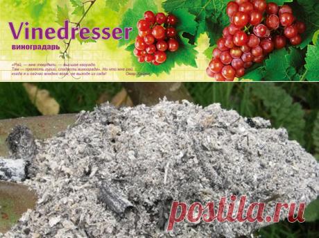 Зола как комплексное минеральное удобрение для винограда