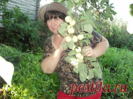 Татьяна Воронкова