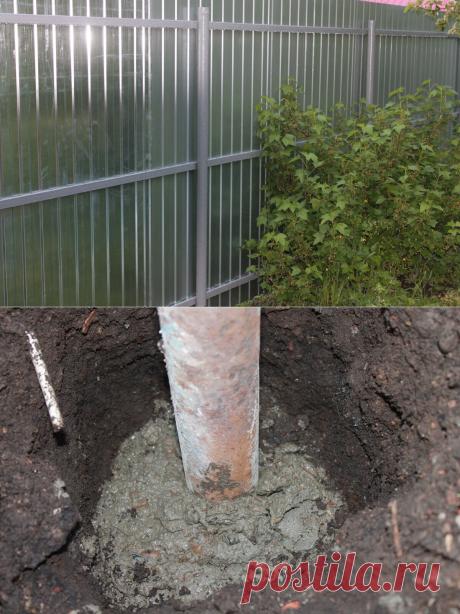 Сосед подсказал хитрую технологию, как залить заборный столб на долгие года, который не поднимет зимой | Генератор идей | Яндекс Дзен