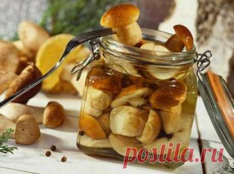 Рецепт маринованных грибов на зиму в банках, рецепты маринадов для консервации. Вы узнаете как мариновать опята, шампиньоны, маслята, лисички, белые грибы.