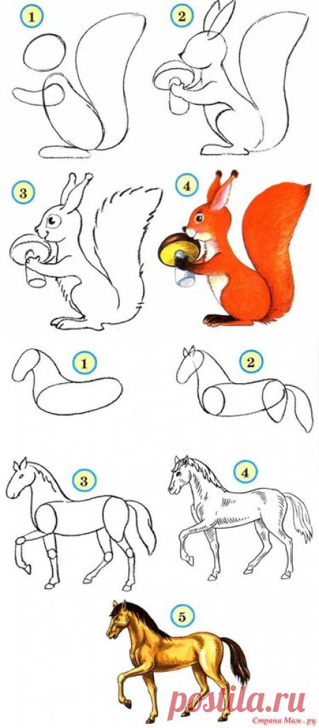 17 карточек в коллекции «Рисование животных» пользователя Родион Д. в Яндекс.Коллекциях