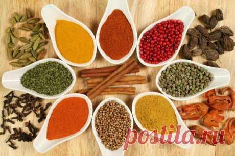 Пищевые добавки и приправы.