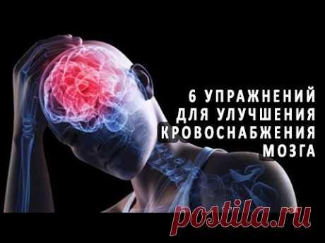 6 упражнений для улучшения кровоснабжения мозга