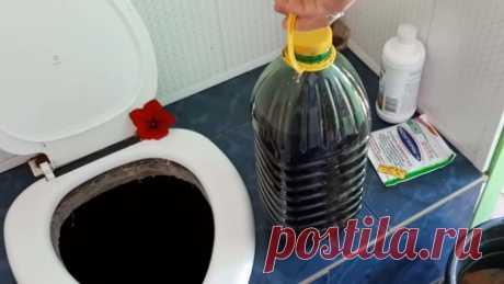 Как быстро устранить запах в дачном туалете / Домоседы