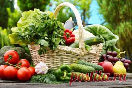 Список продуктов для тех, кто хочет перейти на здоровое питание   Всегда в форме!