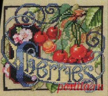 Gallery.ru / Фото #13 - Цветочные семена - Clematis
