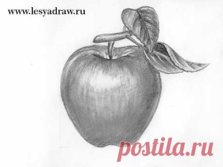 Рисуем яблоко карандашом  Для этого вам необходим хотя бы один мягкий простой карандаш, а лучше, чтоб было два карандаша разной мягкости, например 2 и 6В. И конечно стерка, обязательно.