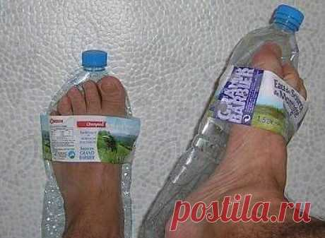 Поделки из пластиковых бутылок / Домоседы