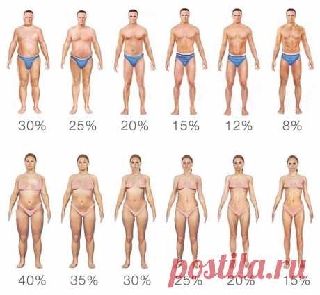 Существует еще один простой способ измерить процент жира — сравнить себя с фотографией, где изображено тело с разным объемом жировой прослойки. (+таблица со значениями)