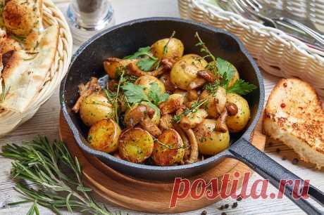 Аппетитные и бюджетные блюда: 7 рецептов, которые не ударят по кошельку и быстро готовятся