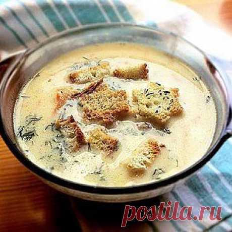 Сырный суп по-французски с курицей рецепт – супы